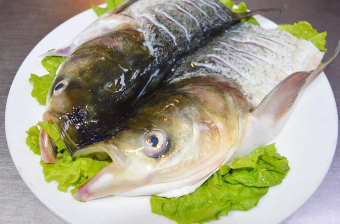 新闻动态 节气 健康养生    食料 千岛湖有机花鲢鱼头 辅料: 葱结